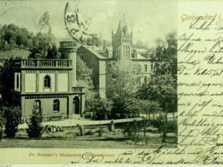 Sokolowsko in situ 8